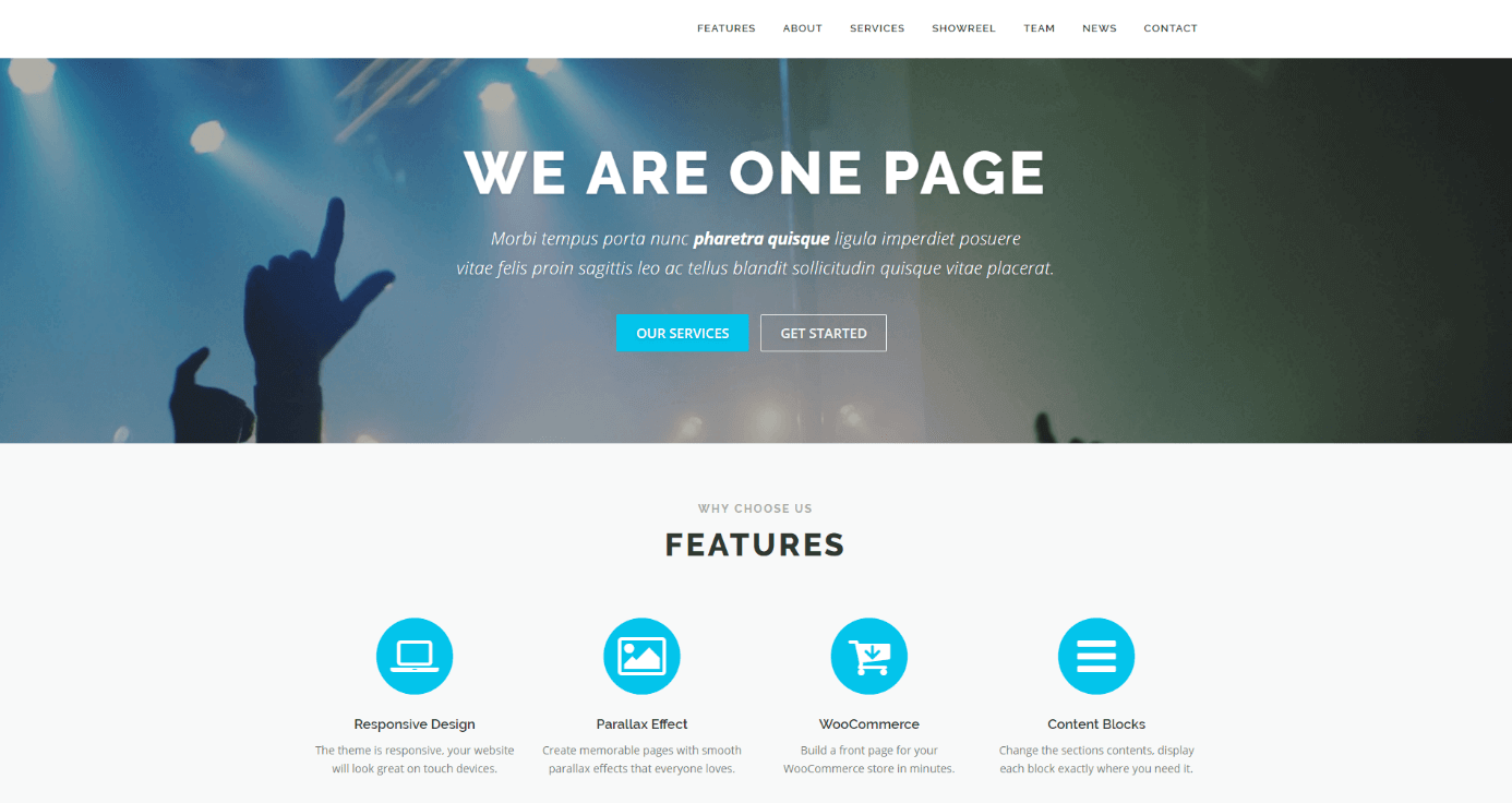 Wordpress Themes The Best Designs For Your Website 11 Ionos