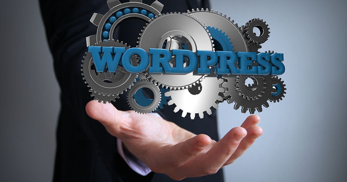 WordPress themes: The best designs for your website - 1&1